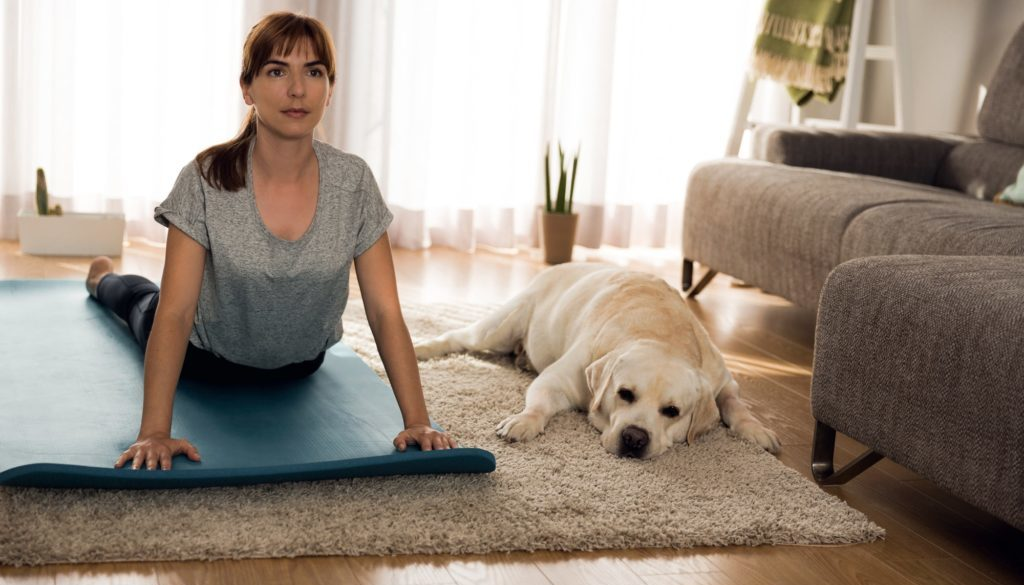 Doing exercise with my lazy dog